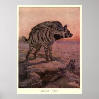 Het vintage Schilderen van de Hyena (1909) Poster