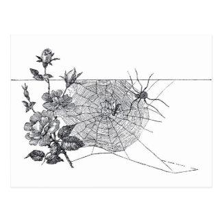 Het vintage Spinneweb en nam toe Briefkaart