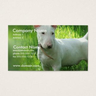 Het Visitekaartje van bull terrier Visitekaartjes