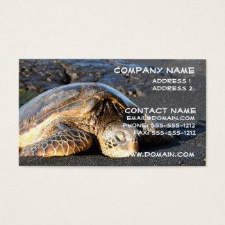 Het Visitekaartje van de Schildpad van het zee Visitekaartjes