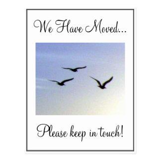 Het vliegende Briefkaart van de Adreswijziging van