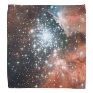 Het volledige Afbeelding van Hubble ACS van NGC Bandana