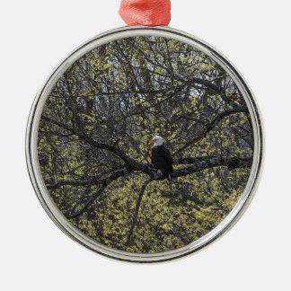 Het Vooruitzicht Painterly van Eagle Zilverkleurig Rond Ornament