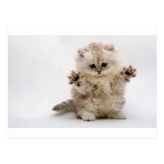 Het vrije Katje van Omhelzingen Briefkaart