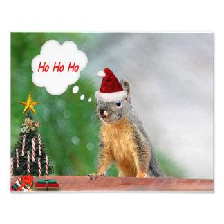Het vrolijke Spreuk Ho Ho Ho van de Eekhoorn van K Fotografische Afdruk