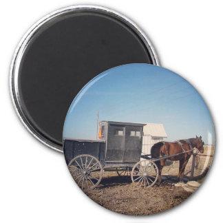 Het wachten Paard Amish en Met fouten Magneet