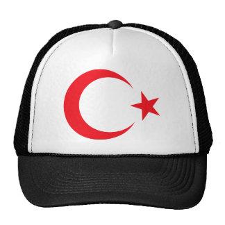 Het Wapenschild van Turkije Petten