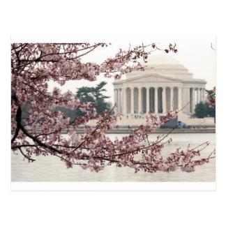 Het Washington DC van de Bloesem van de kers Briefkaart
