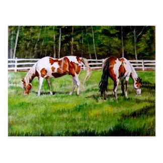 Het weiden van twee Paarden van de Verf Briefkaart
