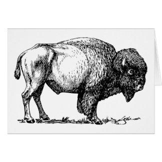 Het wenskaart van buffels of van de Bizon