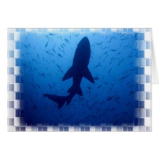 Het Wenskaart van de Aanval van de haai
