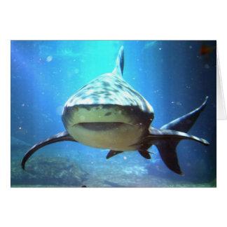 Het Wenskaart van de haai