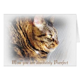 Het Wenskaart van de Kat van de Gestreepte kat van