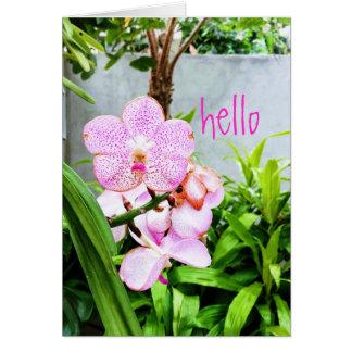 Het Wenskaart van de Orchidee van Hello