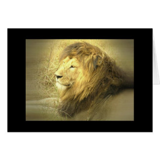 Het Wenskaart van de Trots van de leeuw