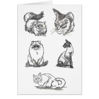 Het wenskaart van vijf Katten door Nicole Janes