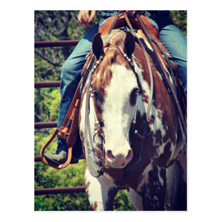 Het westerne Paard van de Verf Briefkaart