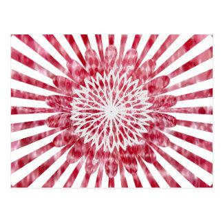 Het Wiel van de Energie van de Zonnebloem NOVINO Briefkaart