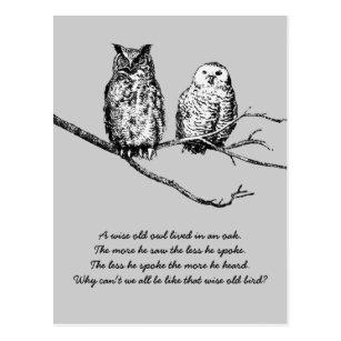 Het Wijze Briefkaart Van De Wijsheid Van De Uil