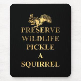 Het wild van het domein legt een eekhoorn in muismatten