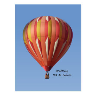 Het wilde Briefkaart van de Ballon van de Hete