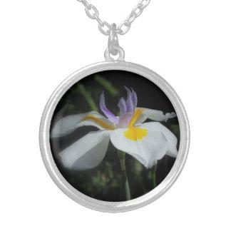 Het wilde Echte Zilveren Ketting van de Iris