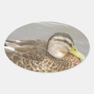 Het Wilde Zwemmen van de Eend Ovale Sticker