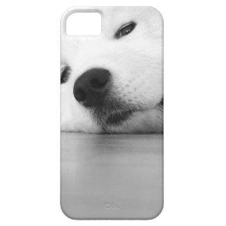Het Wit van de Hond van de Foto van Samoyed Barely There iPhone 5 Hoesje