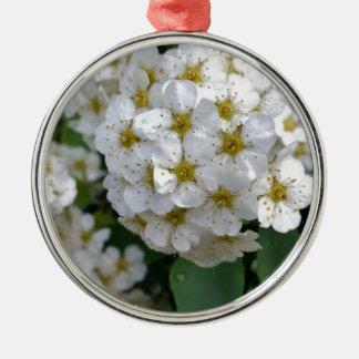 Het witte bloemen gloeien zilverkleurig rond ornament
