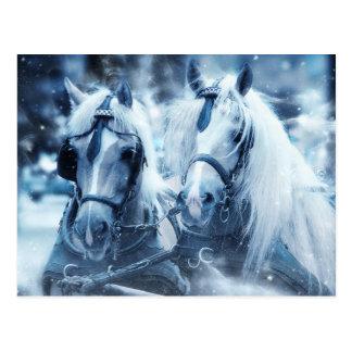 Het witte briefkaart van het Paard