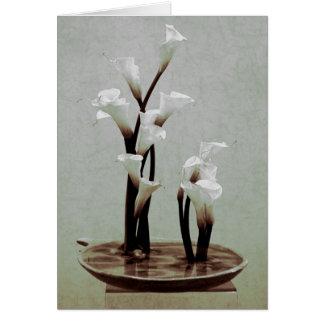 Het witte Calla Wenskaart van Ikebana van de Lelie
