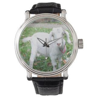 Het witte Horloge van de Geit