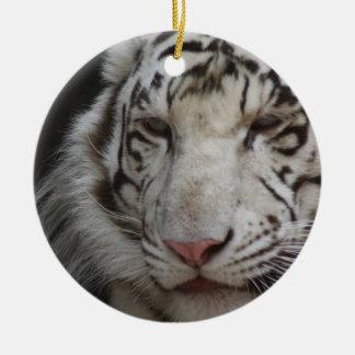 Het witte Ornament van de Tijger