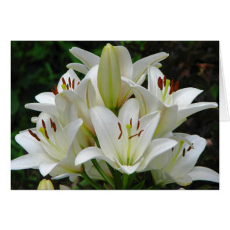 Het witte Wenskaart van Lelies