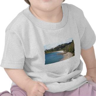 Het zandstrand van het Eiland van Waiheke schilder T-shirt