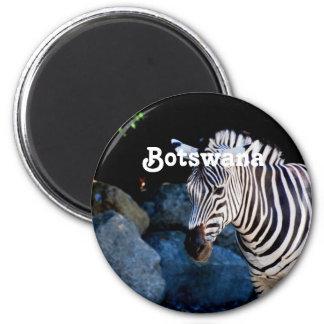 Het Zebra van Botswana Magneet