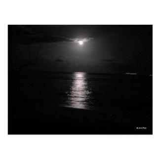 Het Zee van de nacht Briefkaart