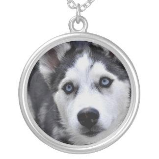 Het Zilveren Ketting van het schor Puppy