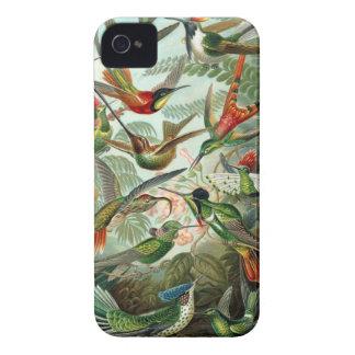 Het zoemende kleurrijke patroon van de vogels vint iPhone 4 hoesje