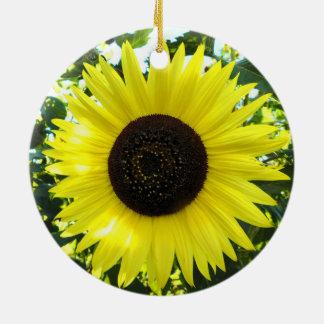 Het zonnige Ornament van de Zonnebloem