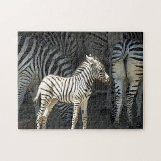 Het zonnige Zebra van het Baby Legpuzzel
