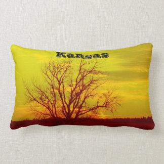 Het Zonsondergang van Kansas, Windmolen en een Lumbar Kussen