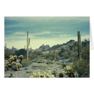Het Zuidwesten van de Woestijn van Arizona Wenskaart