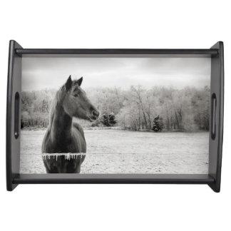 Het zwart-witte Dienende Dienblad van het Paard