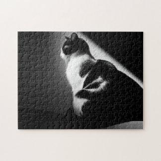 Het zwart-witte Portret van de Kat Foto Puzzels