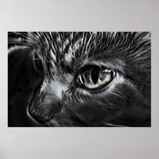 Het zwart-witte Poster van de Kat