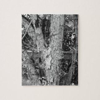 Het zwart-witte Raadsel van de Foto van de Natuur Legpuzzel