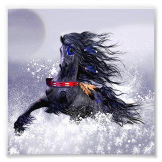 Het zwarte Blauwe Indische Paard van de Foto Afdruk