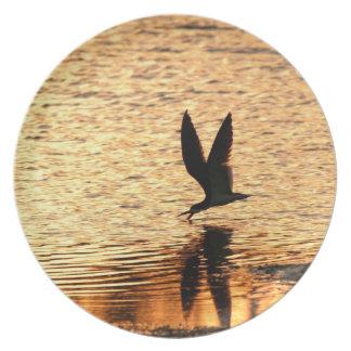 Het zwarte Bord van de Vogel van de Schuimspaan