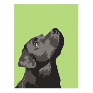Het zwarte Briefkaart van Labrador (kies Uw Eigen